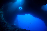 Diver leaving Blue Holes through an eye in the wall of the cave, Palau Micronesia (Photo by Matt Considine - Images of Asia Collection)