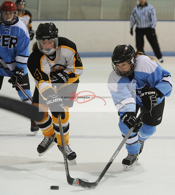 Chugiak Eagle River's Erin Bernard, right, battles for the puck with Dimond/West's Delanie Maxon at Ben Boeke Arena Monday, January 25th, 2016.  Photo for the Star by Michael Dinneen