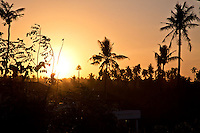 Sunrise over the Balian Palms.