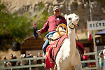Shane Harrington, of Klamath Falls, Oregon, races to the championship at the 51st annual International Camel Races in Virginia City, Nevada  September 12, 2010. .CREDIT: Max Whittaker for The Wall Street Journal.CAMEL