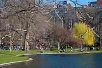 People picknicking near the lagoon in the Public Garden of Boston