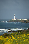 CA: Pigeon Point, California, lighthouse 2005 .Image: capigeon103..Photo Copyright: Lee Foster, lee@fostertravel.com, www.fostertravel.com, (510) 549-2202.