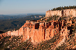 USA, Utah, dawn light on landscape at Paria Point in Bryce Canyon National Park.