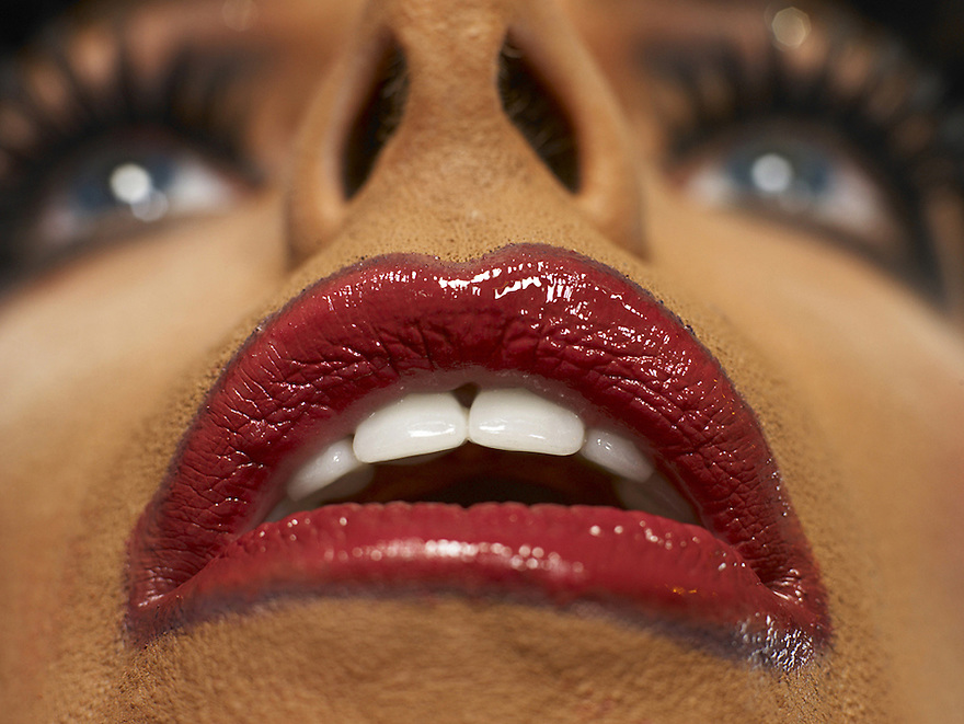 Close Up portrait of Flamboyance<br />