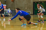 1 November 2015: Yeshiva University Maccabee Setter, Defensive Specialist, and team co-Captain Aliza Muller, a Senior from Los Angeles, CA, digs against the SUNY College at Old Westbury Panthers at SUNY Old Westbury in Old Westbury, NY. The Panthers edged out the Maccabees 3-2 in NCAA women's volleyball, Skyline Conference play. Mandatory Credit: Ed Wolfstein Photo *** RAW (NEF) Image File Available ***