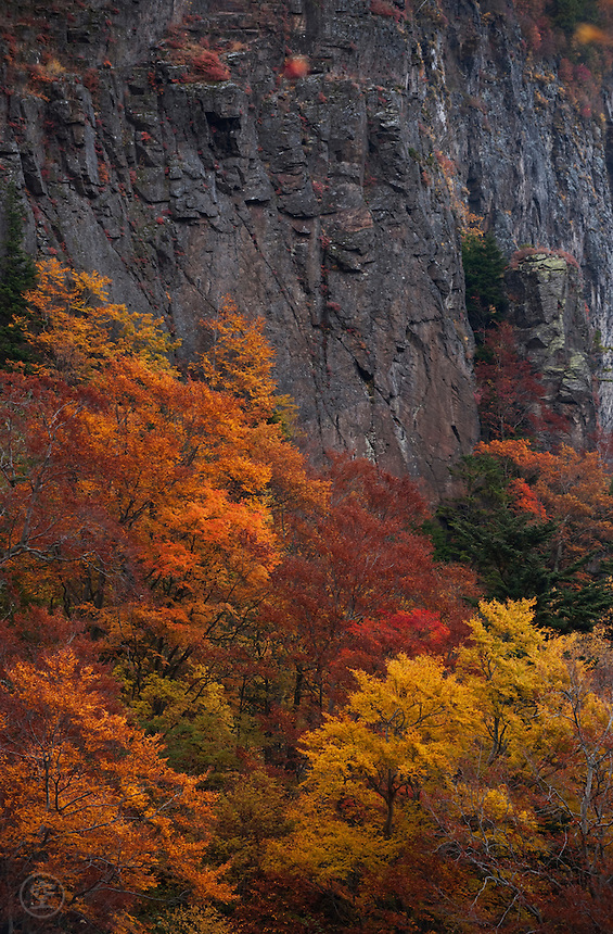 Autumn trees against the steep grey cliffs near Fudou no Taki, Nagano, Japan.