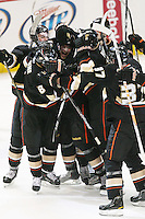 03/02/11 Anaheim, CA: Anaheim Ducks  celebrate after a winning OT goal during an NHL game between the Detroit Red Wings and the Anaheim Ducks at the Honda Center. The Ducks defeated the Red Wings 2-1 in OT.