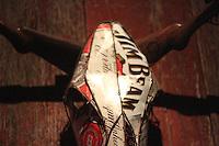 Jim Beam oxen skeleton head