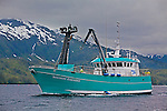 "The fishing vessel ""Northern Endurance,"" cruises Prince William Sound, Alaska, while buying salmon from smaller boats for Peter Pan Seafoods. The boat then ferries the fish to Valdez, Alaska for processing at the Peter Pan plant."