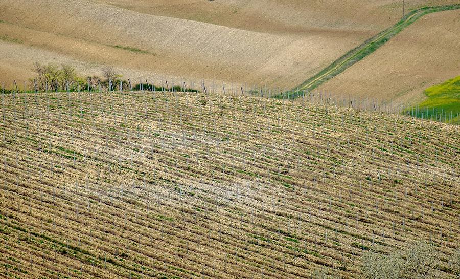 SAN GIMIGNANO, ITALY - CIRCA MAY 2015:  Hills near Gimignano in Tuscany
