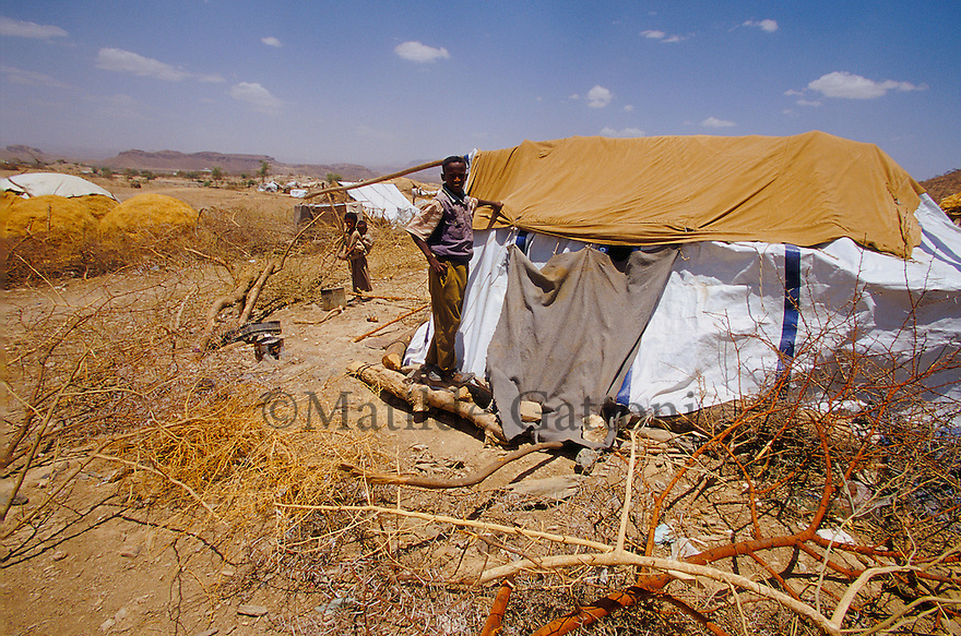 Eritrea - Debub- Young boy standing outside his tent in an IDP camp. As a result of 30 years of war for independence against Ethiopia (from 1961 to 1991) and another 3 years from 1997 to 2000, there are 50,000 Eritreans currently living in internally displaced (IDP) camps throughout the country. These IDPs have fled three times in the last 10 years, each time because of renewed military conflict. They lived in relatives' homes when lucky enough, but mostly, the fled to the mountains, where they attempted to do what Eritreans do best, survive. Currently there is no Ethiopian occupation in Eritrea, but landmines prevent the IDPs from finally going home. .It is estimated that every Eritrean family lost two or three members to the war which makes the reality of the current emergency situation even more painful for Eritreans worldwide. Currently, the male population has been decreased dramatically, affecting the most fundamental socio-economic systems in the country. Among the refugee population, an overwhelming majority of families are female-headed, severely affecting agricultural production. For, IDPs in particular, 80% of households are female-headed..The unresolved border dispute with Ethiopia remains the most important drawback to Eritrea's socio-economic development, as national resources (human and material) continue to be prioritized for national defense. Eritrea is vulnerable to recurrent droughts and variable weather conditions with potentially negative effects on the 80 percent of the population that depend on agriculture and pastoralism as main sources of livelihood. The situation has been exacerbated by the unresolved border dispute, resulting in economic stagnation, lack of food security and increased susceptibility of the population to various ailments including communicable diseases and malnutrition..
