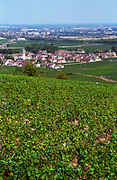A view over the Pommard village from Santenay with vineyards, Bourgogne