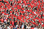 Georgia student section at Ole Miss vs. Georgia at Sanford Stadium in Athens, Ga. on Saturday, November 3, 2012.