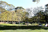 DeLashmet Dol Garden