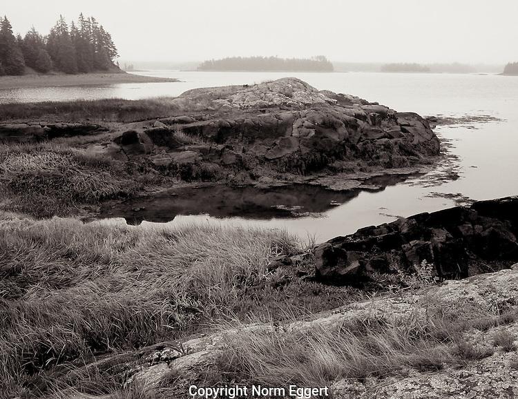 Rocky shoreline at Tide Mill farm, Maine