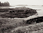 Rocky shoreline at Tide Mill farm, Maine