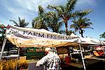 Cedros District Farmer's Market