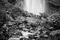 Devil's Punchbowl Falls in Arthur's Pass, Arthur's Pass National Park, Canterbury, South Island, New Zealand, NZ