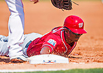15 March 2016: Washington Nationals outfielder Michael Taylor dives safely back to first on a pick-off attempt during a Spring Training pre-season game against the Houston Astros at Osceola County Stadium in Kissimmee, Florida. The Nationals defeated the Astros 6-4 in Grapefruit League play. Mandatory Credit: Ed Wolfstein Photo *** RAW (NEF) Image File Available ***