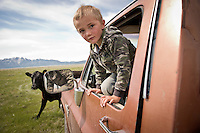 Andy Anderson, 4, watches while his parents try to get a cow into their trailer in their summer pastures in the Centennial Valley of Southwestern Montana in June 2012.  The age of the open range is gone and the era of large cattle drives  over. Today, very few ranches drive their cattle with horses, instead moving them by truck. Now, spurred by growing consumer concern over meat's environmental impact and concerned about the long-term viability of their livelihood, a cohort of ranchers is trying to apply the understanding gleaned from the science of ecology to livestock management.    The idea is called ?sustainable ranching? and it says to heal the land, put more animals on it, not fewer - but move them after a relatively brief interval. If livestock mimick the grazing behavior of wild herbivores - bunched together for safety, intensely grazing an area for a brief period, and then moving on - rangeland health will improve..Andy Anderson, 4, waits while his parents gather a calf in the Centennial Valley of Southwestern Montana, June 13, 2012. Ranching is tough business with most working 14-16 hour days in the calving season  in the Centennial Valley of Southwestern Montana, June 13, 2012. Spurred by growing consumer concern over meat's environmental impact and concerned about the long-term viability of their livelihood, a cohort of ranchers is trying to apply the understanding gleaned from the science of ecology to livestock management.    The idea is called ?sustainable ranching? and it says to heal the land, put more animals on it, not fewer - but move them after a relatively brief interval. If livestock mimick the grazing behavior of wild herbivores - bunched together for safety, intensely grazing an area for a brief period, and then moving on - rangeland health will improve..