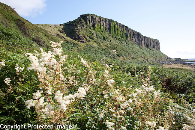 Cliffs at Drumadoon Point, Isle of Arran, Scotland