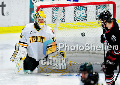 26 November 2010: University of Vermont Catamount goaltender Rob Madore, a Junior from Pittsburgh, PA, in third period action against the Northeastern University Huskies at Gutterson Fieldhouse in Burlington, Vermont. Madore turned away 23 shots as the Catamounts and the Huskies battled to a 2-2 tie. Mandatory Credit: Ed Wolfstein Photo