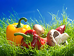 Sweet peppers and cremini mushrooms artistic food still life in green grass under bright sunny sky