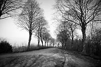 cobbled road up to Cassel..74th Gent-Wevelgem (2012).236km between Deinze & Wevelgem.winner 2012: Tom Boonen..