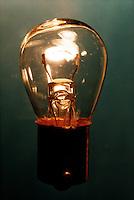 LIGHT BULB 12v<br /> Clear Light Bulb Shows Filament