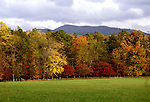 TN: Tennessee Great Smoky Mountains National Park, Mtns, Cades Cove, Fall color          .Photo Copyright: Lee Foster, lee@fostertravel.com, www.fostertravel.com, (510) 549-2202.Image: tnsmok211