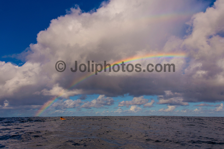 Namotu Island Resort, Namotu, Fiji. (Tuesday May 20, 2014) Rainbow at Cloudbreak.– There were light winds early today with sunshine and the odd passing shower producing rainbows on and off all morning. There were small wave sessions at Cloudbreak and Namotu Lefts for some of the guests. Photo: joliphotos.com