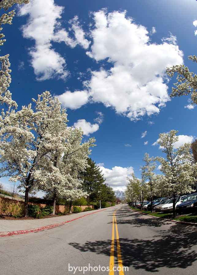 1004-61 180<br /> <br /> April GCS 2010<br /> <br /> Photo by Mark Philbrick/BYU<br /> <br /> &copy; BYU PHOTO 2010<br /> All Rights Reserved<br /> photo@byu.edu  (801)422-7322