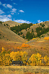 IDAHO. Ketchum Sun Valley. Fall. Mountain Cabin. Aspens.