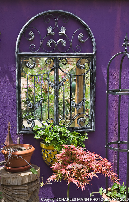 A storage shed wall painted purple forms a colorful niche in Dan Johnson's Denver garden.