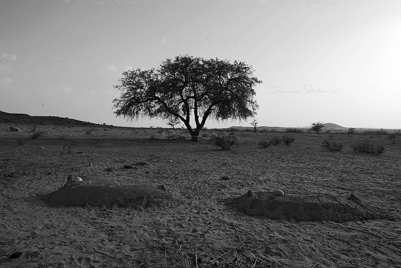 Sinet, Eastern Tchad, June 18, 2004.The tombs of 2 villagers killed yesterday morning during a Janjavid militia incursion across the border from Sudan.