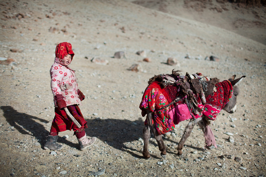 A young Kyrgyz girl wearing pink and her donkey..Ech Keli, Er Ali Boi's camp, one of the richest Kyrgyz in the Little Pamir..Trekking with yak caravan through the Little Pamir where the Afghan Kyrgyz community live all year, on the borders of China, Tajikistan and Pakistan.
