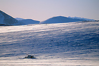 Spring Caribou hunting camp on the snow covered tundra of the north slope, Alaska