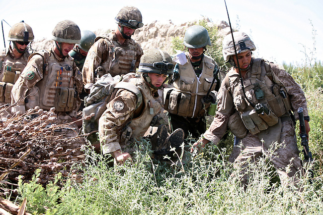 A U.S. Marine and two Afghan soldiers help British troops carry a comrade wounded in a grenade blast to a waiting medevac helicopter in Helmand province, southern Afghanistan. July 17, 2009. DREW BROWN/STARS AND STRIPES
