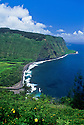 View from Waipio Valley Lookout: Waipio Bay, Hamakua-North Kohala coast; Island of Hawaii.
