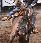 CHAD PILSTER &bull;&nbsp;Hays Daily News<br /> <br /> Casey McGooden rides a bronc on Monday, July 29, 2013, during the Graham County fair and Jayhawker Roundup Rodeo in Hill City, Kansas. McGooden scored a 74.