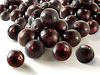 Pictures &amp; Photos of the acai berry the super fruit anti oxident from the Amazon. The acai berry has been associated with helping weight loss.