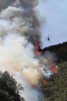 Incendio Forestal en Cota / Wildfire in Cota