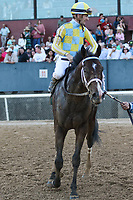 HOT SPRINGS, AR - April 15: Classic Empire #2 and jockey Julien Leparoux  circle after winning the Arkansas Derby at Oaklawn Park on April 15, 2017 in Hot Springs, AR. (Photo by Ciara Bowen/Eclipse Sportswire/Getty Images)
