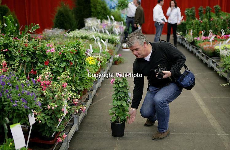 Foto: VidiPhoto..BEMMEL - Impressie van de voorjaarsbeurs van Bloemenveiling VON in Bemmel.