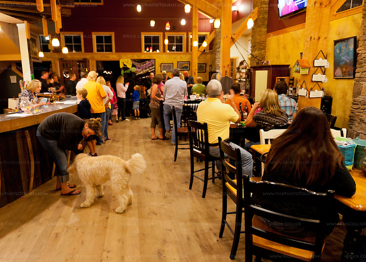 Visitors watch the live band and enjoy the music in the tasting room at Barrel Oak Winery (during the annual harvest party).