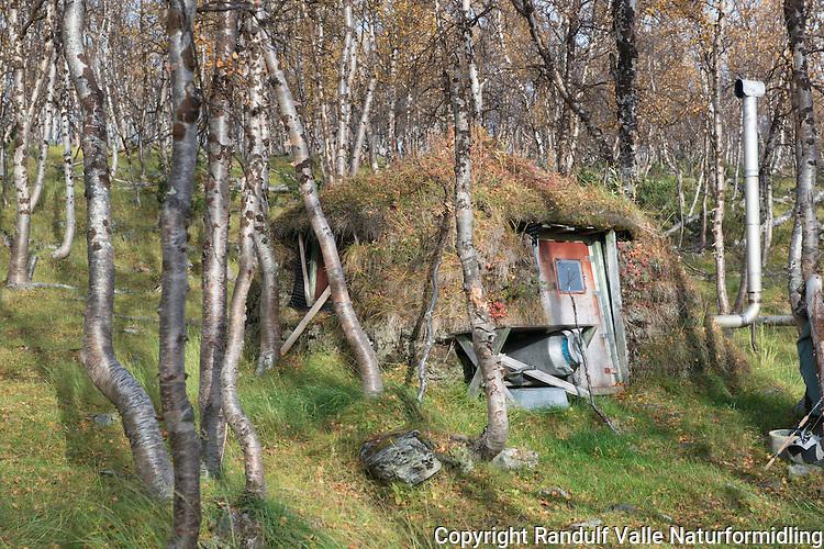Gamme i Stabbursdalen nasjonalpark. ---- Small hut in Stabbursdalen National Park.