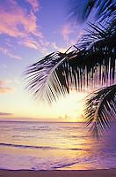 Napili Bay sunset on Maui