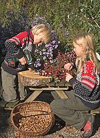 Kinder basteln mit Kastanien, Junge bohrt Löcher in Früchte, Mädchen fädelt Kastanien auf einen Draht auf, Kastanie