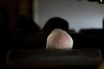 Senator John McCain Republican presidential candidate, aboard his campaign plane. Dallas, Texas, January 30, 2008.