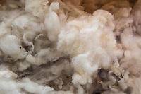 Particolare di lana grezza Bute tartan mills